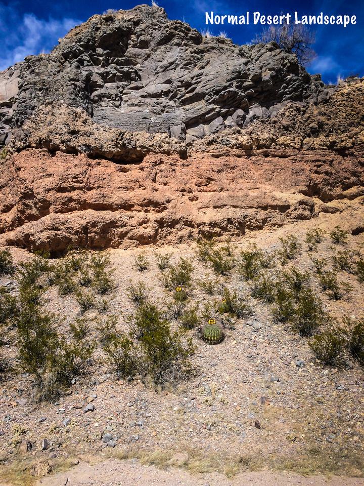 slot canyon-105